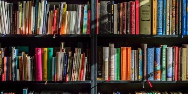 estanteria llena de libros