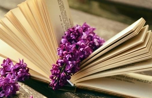 libro_purpura