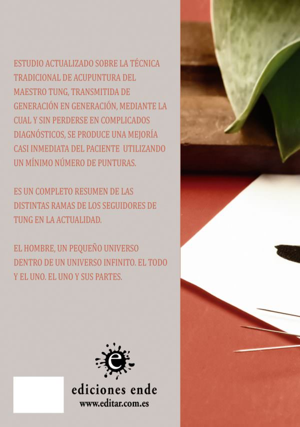 contraportada-estudios-de-acupuntura-energetica-tradiciones-del-maestro
