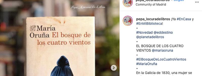 Instagram de pepa_locuradelibros